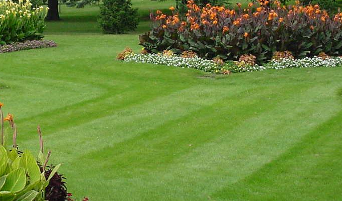 When to Utilize a Landscaping Company